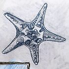 Starfish Drawing by Emma Brooks