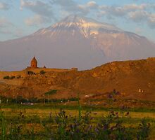 Mount Ararat and Khor Virap by fortheloveofit