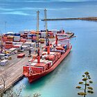 Port of Napier by Tony Burton