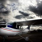 Cessna 182 Aircraft by Candice Campbell