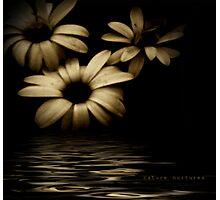 Nature nurtures Photographic Print