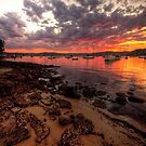 Paradise - Paradise Beach - Avalon NSW - Philip Johnson Fine Art Calendars by Philip Johnson