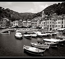 Portofino Harbour by jaydeew