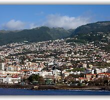 Cruise 2010 Madeira    *SEE LARGE* by John44