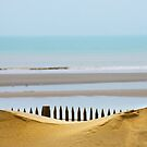 The beach's fence by Yannick Verkindere