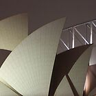 Sydney Opera House Sails at Night by jhea5333