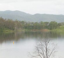Still water of Somerset dam,Qld,Australia by Marilyn Baldey