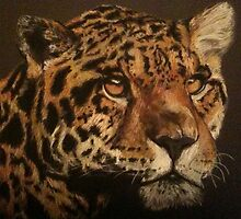 Jaguar by Rayven Collins