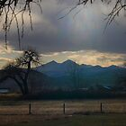 Will it Storm? by Barb Miller