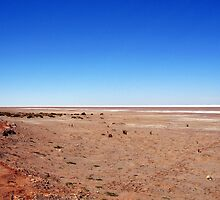 Lake Eyre by STEPHANIE STENGEL | STELONATURE PHOTOGRAHY