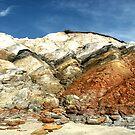 Aquinnah Cliffs by Dick  Iacovello