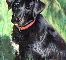 Black Lab by Kathleen Kelly-Thompson