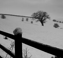 Snowy Winter landscape by Chukie