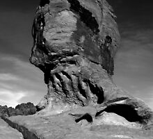 Mother nature's sculpture - B&W1 by Gili Orr