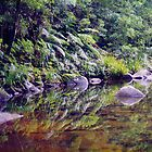 River Reflections, Coombadjha Creek by Michael John