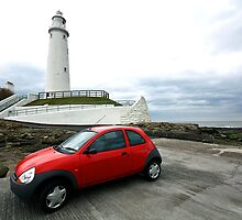 Red Ka at the Lighthouse by David  Parkin