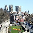York Minster From The City Wall by Malky-C