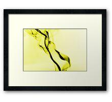 Wisp 004 Framed Print