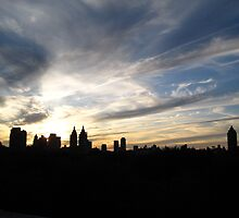 New York Sunset Atop The MET by QuantumRebel
