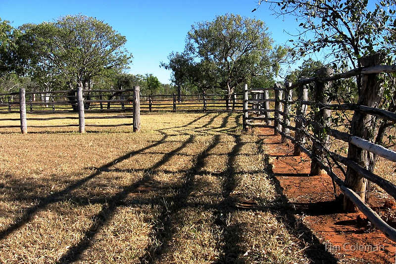 Stockyard fences by Tim Coleman
