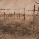farm gate by Samantha  Dormehl