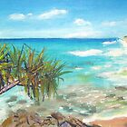 Noosa Views  by gillsart