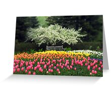 Spring Repose Greeting Card
