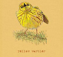 Yellow Warbler Bird by Revelle Taillon
