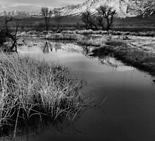 Mt. Tom Reflecting Pond--B&W Conversion by Chris Morrison