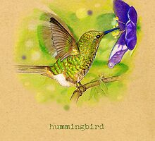 Hummingbird by Revelle Taillon