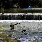Swimming on Barton Creek by Cathy Jones