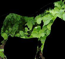 Green Horse by Robert Redman