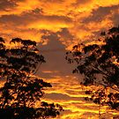 On Fire - Camden, NSW by JeniNagy