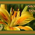 Birthday Wishes Greeting Card With A Yellow Lily by taiche