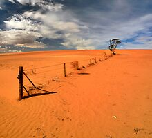 Arid Pastures by Bill  Robinson