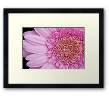 Mostly Pink Framed Print