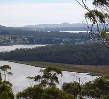 Brady's Look Out*- over looking the Tamar River -Tasmania* by Ritchard Mifsud