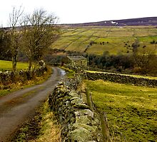 Dales Country Road. by Trevor Kersley