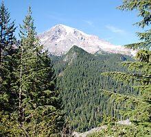 Mt. Rainier Nisqually Glacier by John Schneider