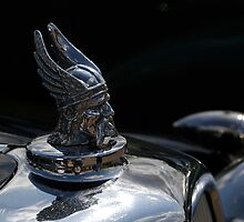 Rover 16 Viking symbol by buttonpresser