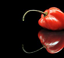 Red Habanero by carlosporto