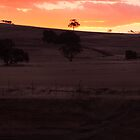 Dam Sunset - Western Australia by Good-Thanks
