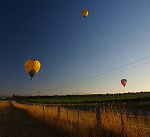 Sunrise Ballooning by Sarah Howarth [ Photography ]