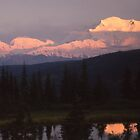 Midnight Sunset on Denali by Wayne Hughes