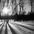 Shadowy Footprints by reindeer