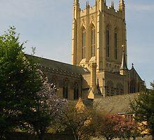 A Peaceful  Corner, Bury St Edmunds by wiggyofipswich