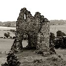 Tutbury Castle Ruins by Mike Topley