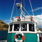 The Monarch in Dunedin, New Zealand by fantastisch2003