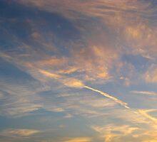 Arrow In The Sky by Linda Miller Gesualdo