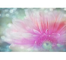 Your Light Photographic Print